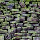 """Mossy Stone Wall"" stock image"