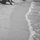 """Men ashore"" stock image"