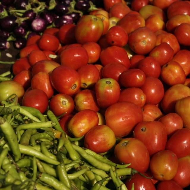 """""""Fruitless Work"""" stock image"""