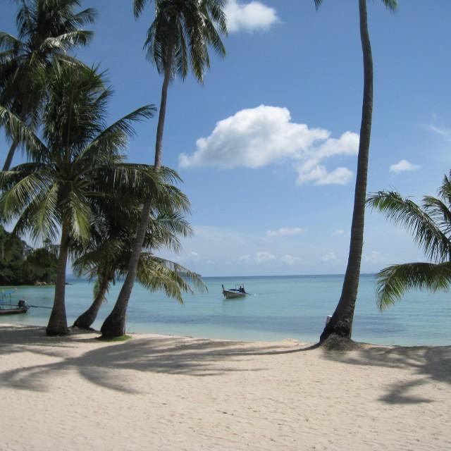 """The Beach, Koh Phi Phi, Thailand"" stock image"