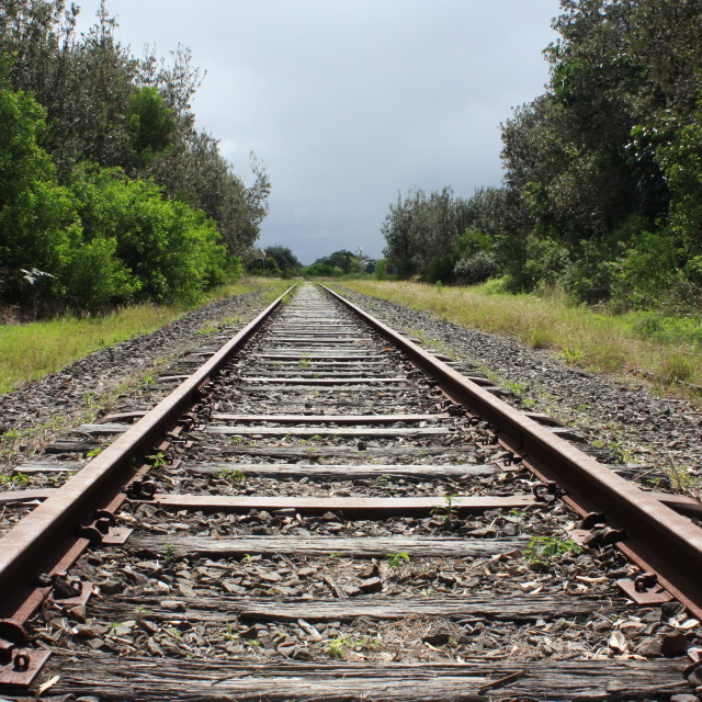 """""""Looking Down The Tracks"""" stock image"""