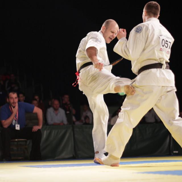 """Karate - Low Kick"" stock image"
