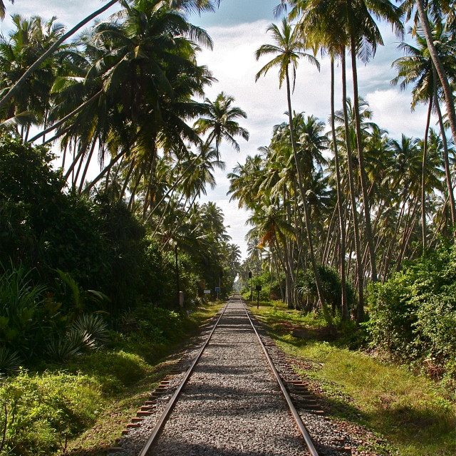 """Sri Lanka Train track"" stock image"