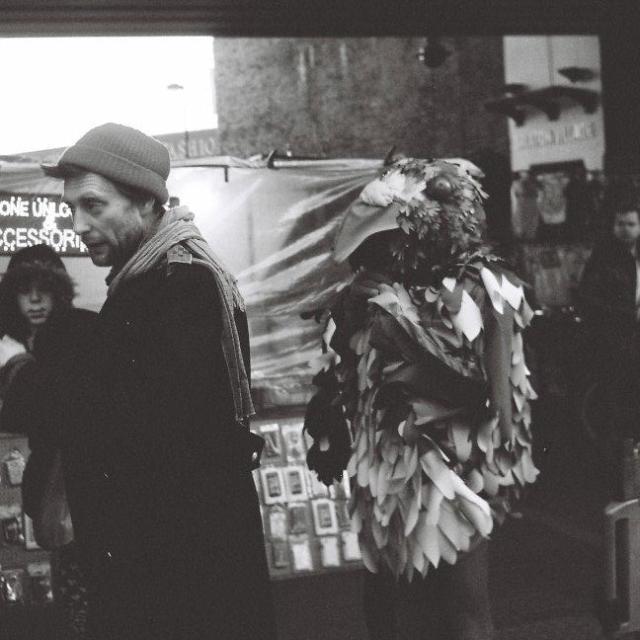 """Brixton Pigeon"" stock image"