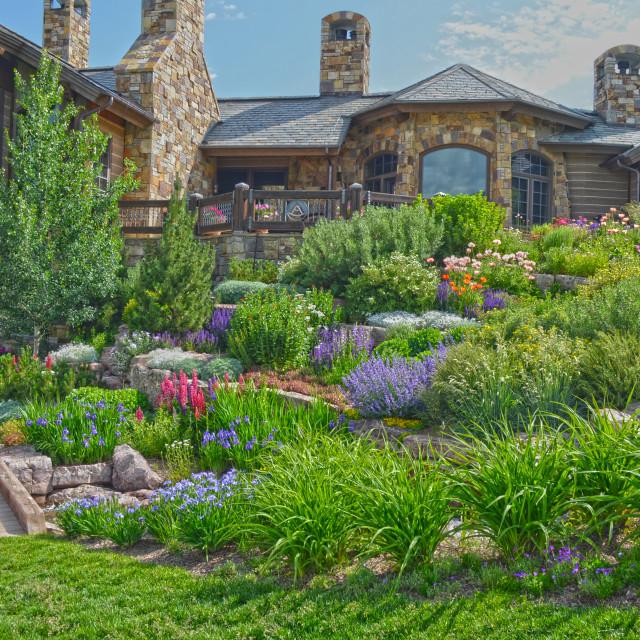 """""""Alpine Perennial Garden"""" stock image"""