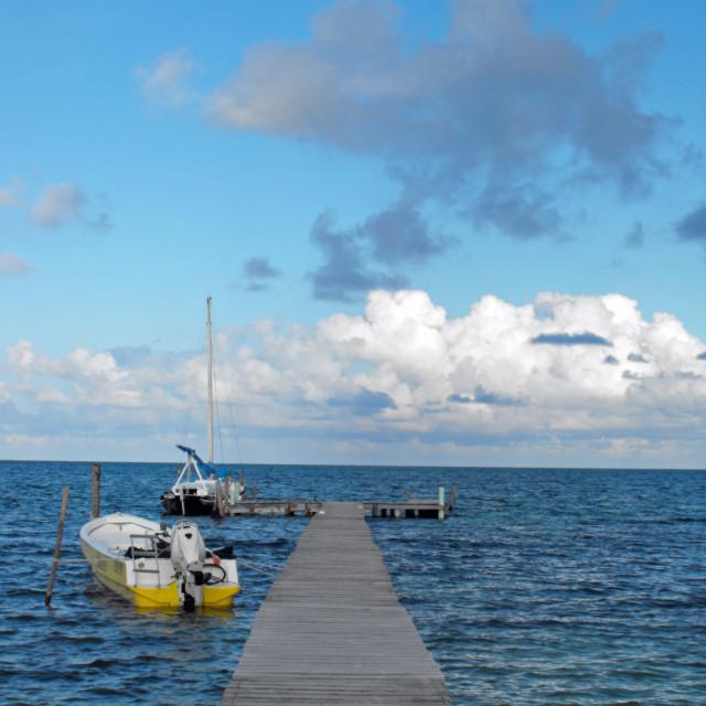 """Caye Caulker jetty"" stock image"