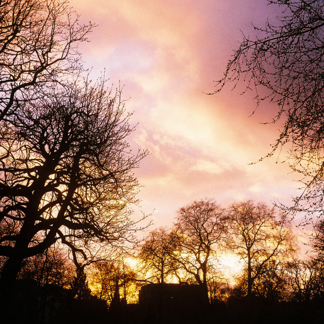 """""""Sunset of Hyde Park"""" stock image"""