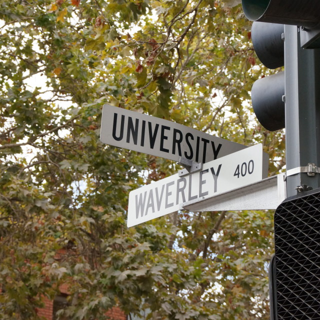 """University Avenue, Palo Alto"" stock image"