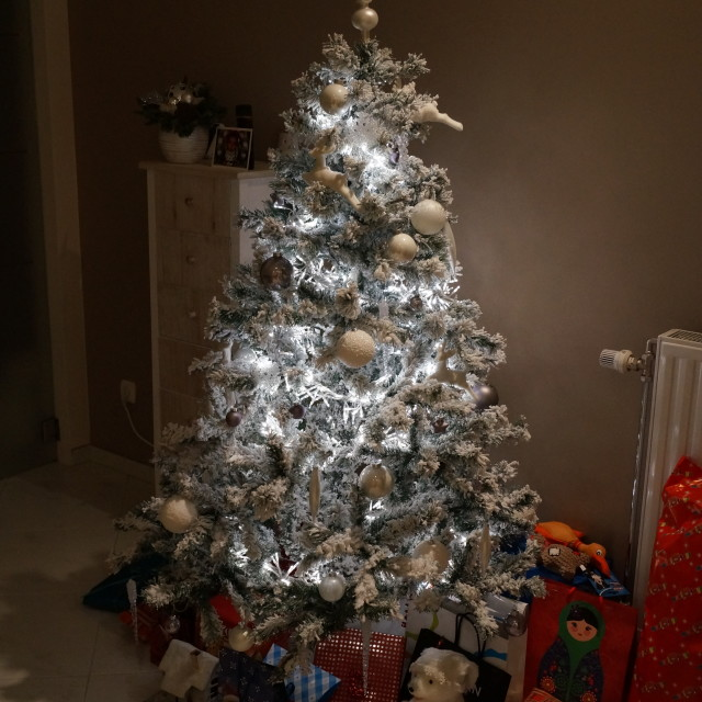 """White Christmas Tree"" stock image"