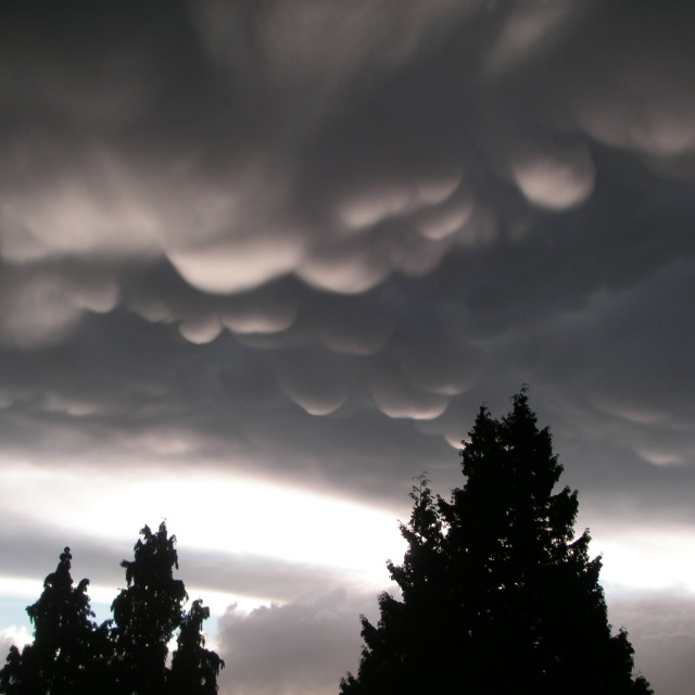 """Mammatus Clouds"" stock image"