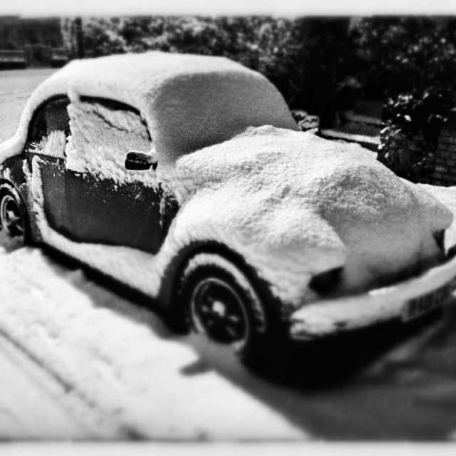 """Beetle in the snow"" stock image"