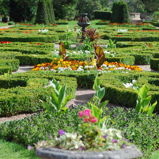 """Formal garden"" stock image"