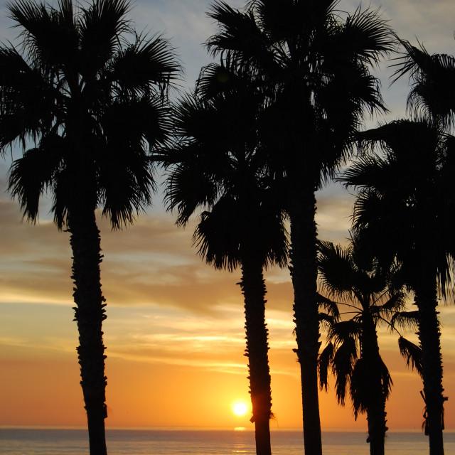 """""""Ocean Beach, San Diego"""" stock image"""
