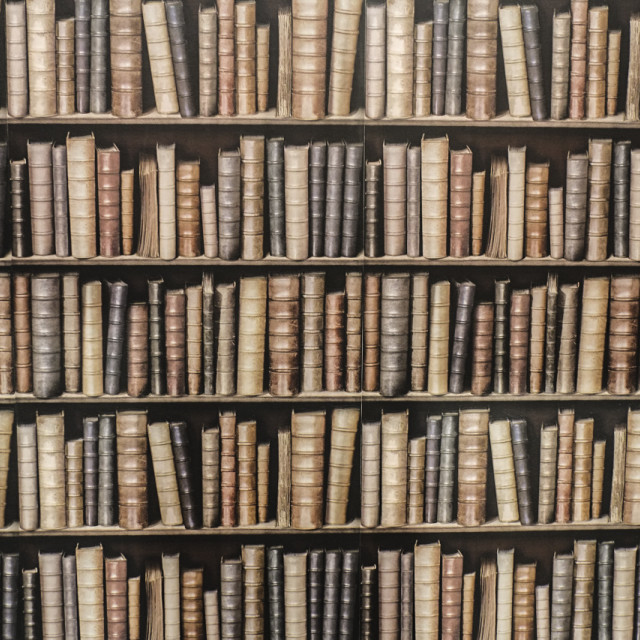 """Bookshelf Wallpaper"" stock image"