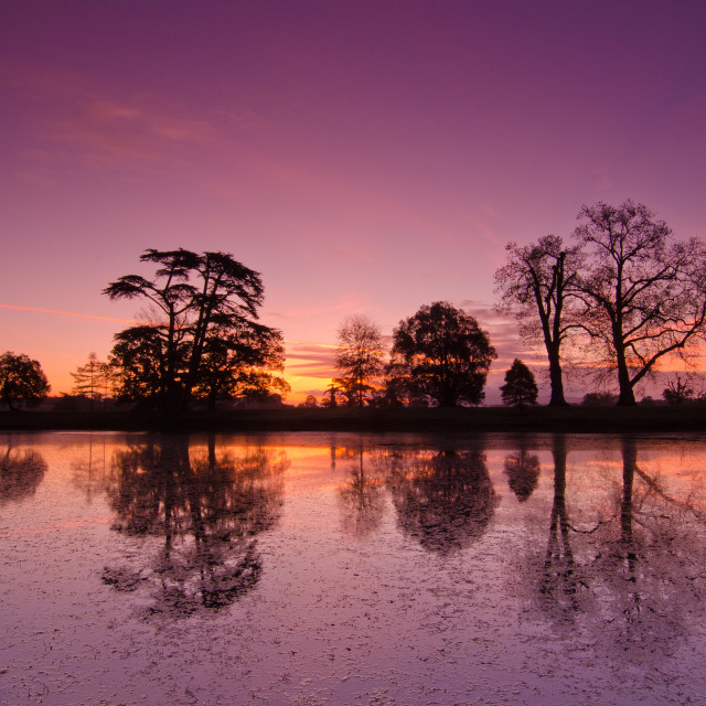 """Croome Park"" stock image"