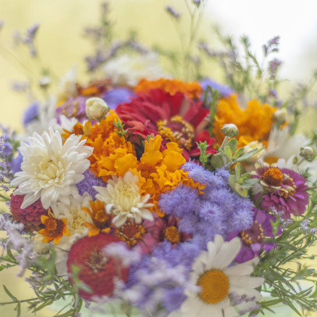 """""""Bunch of Flowers"""" stock image"""