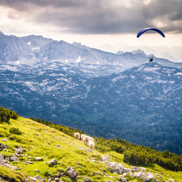 """Paragliding in Mountains"" stock image"