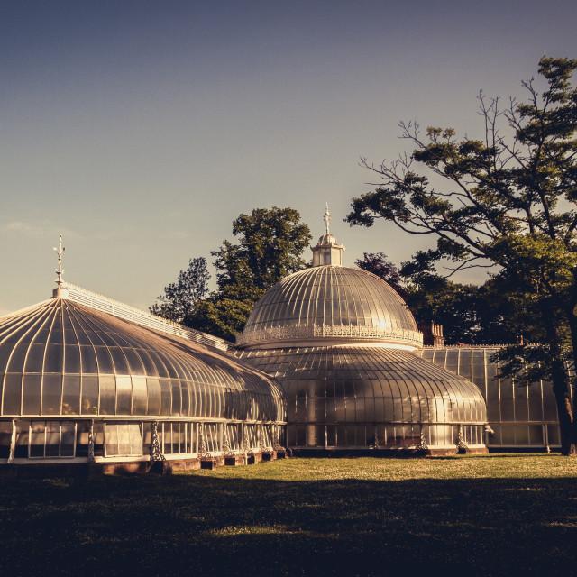 """""""Botanic Gardens, Glasgow, Scotland, UK"""" stock image"""
