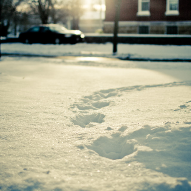 """Footprints in the Snow"" stock image"
