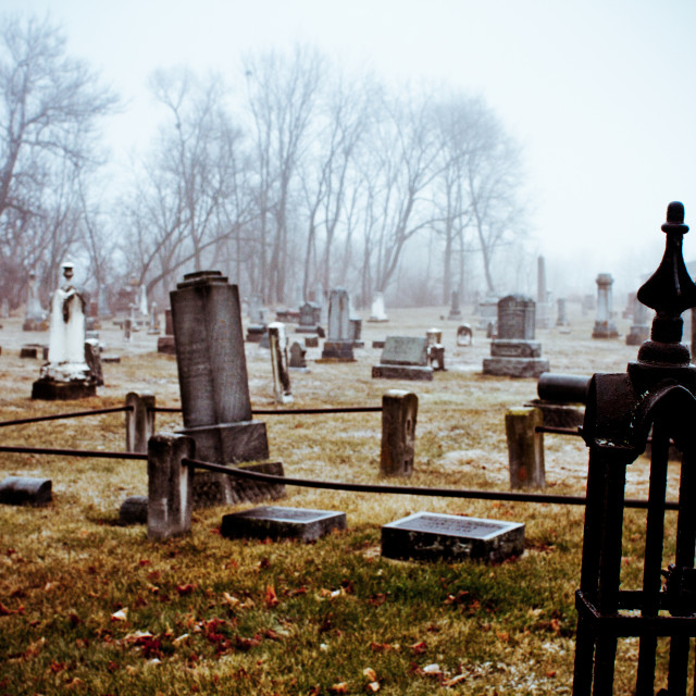 """The Cemetery"" stock image"