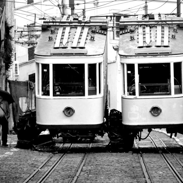 """trams"" stock image"