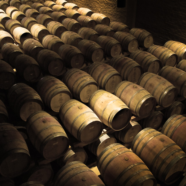 """Wine maturing in oak barrels"" stock image"