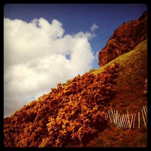 """Arthur's Seat, Edinburgh (Retro)"" stock image"
