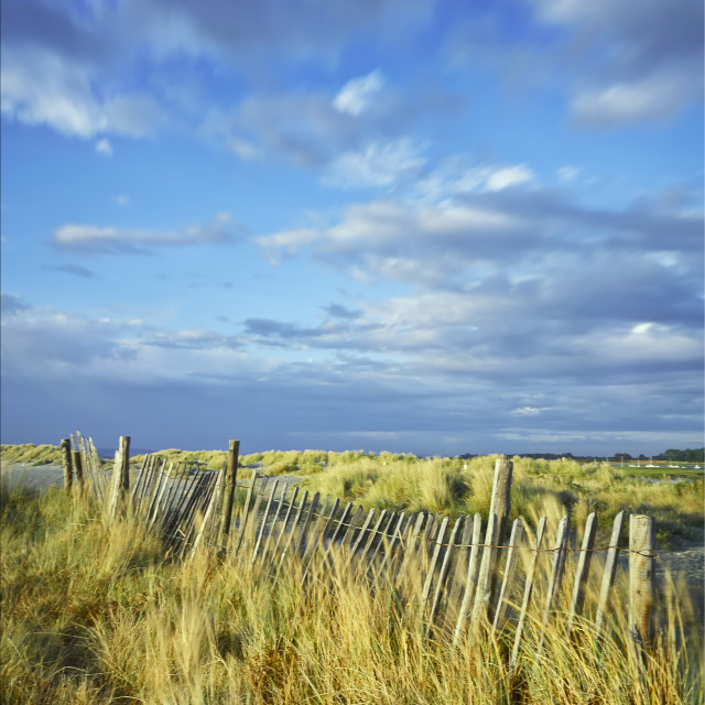 """Windy Headland"" stock image"