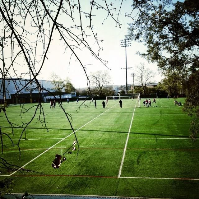 """Soccer field"" stock image"
