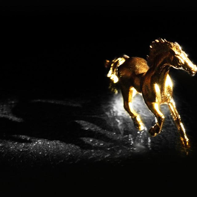 """Golden Horse"" stock image"