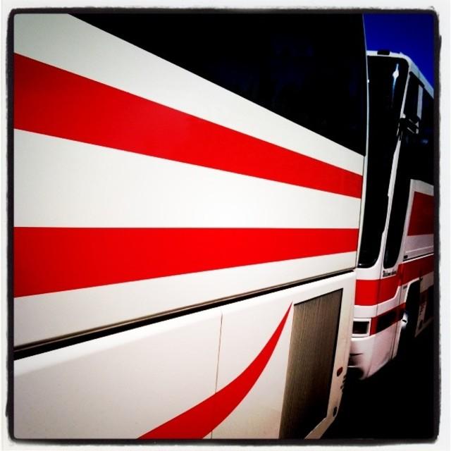 """Buses"" stock image"