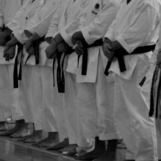 """Karate"" stock image"
