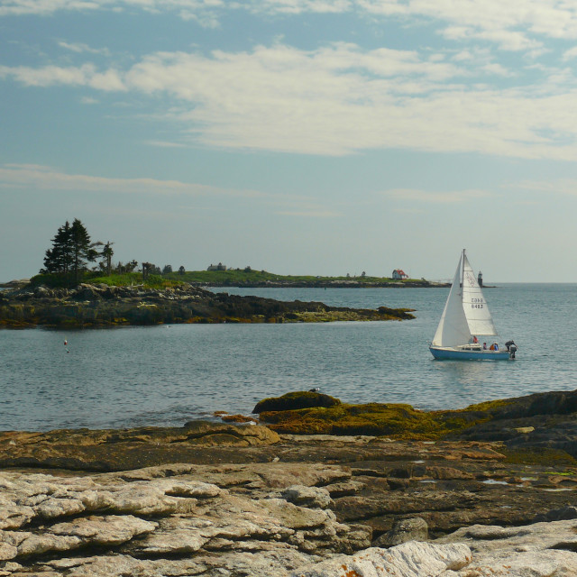 """Sailboat in Maine"" stock image"