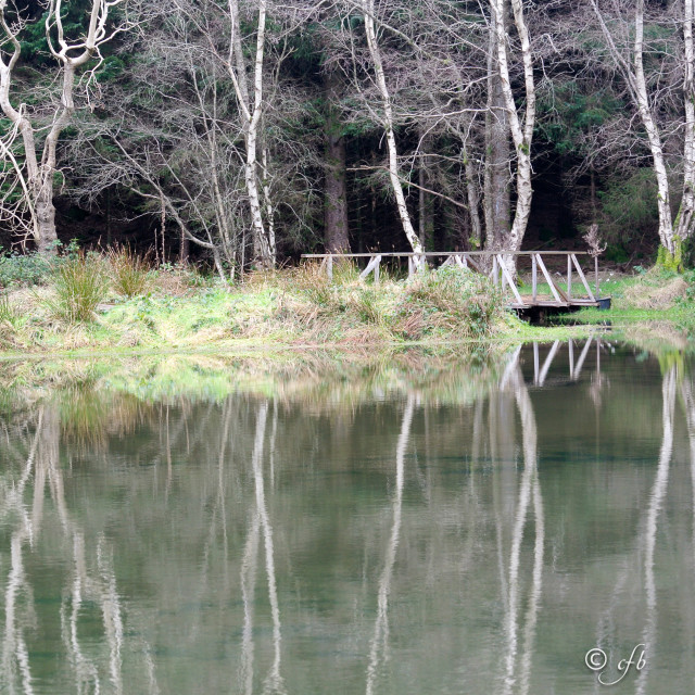 """Glendalough House 'Lake Reflections'"" stock image"