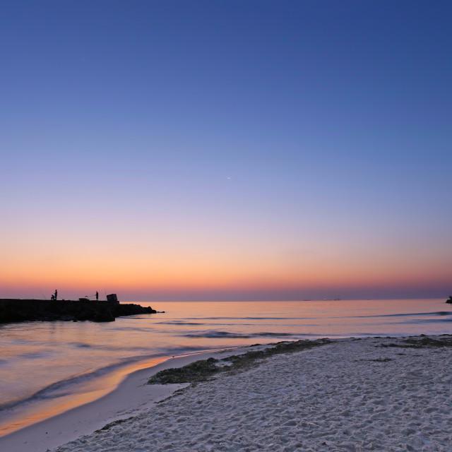 """Dawn on the Beach"" stock image"