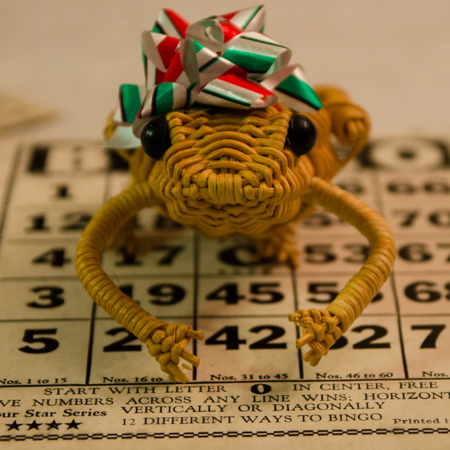 """""""Bingo Frog"""" stock image"""