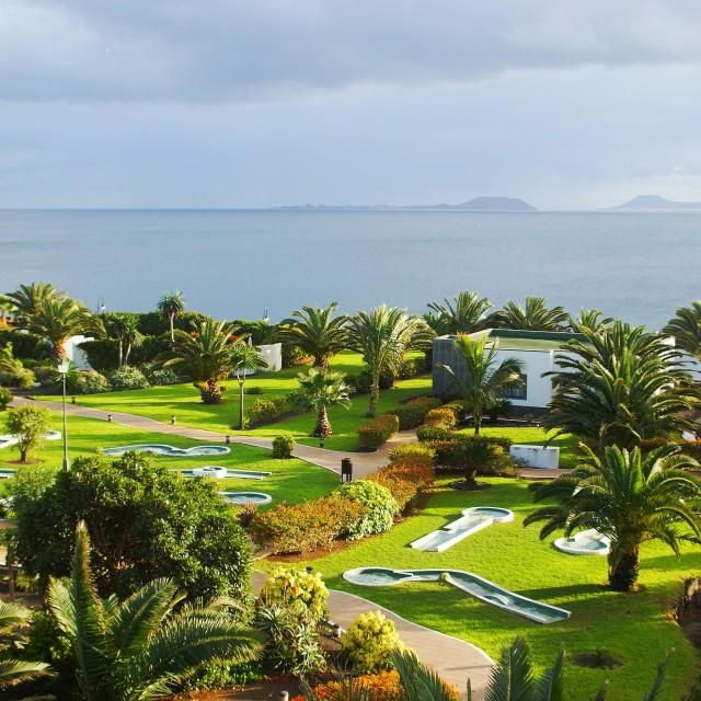 """Golf amongst the Palms"" stock image"