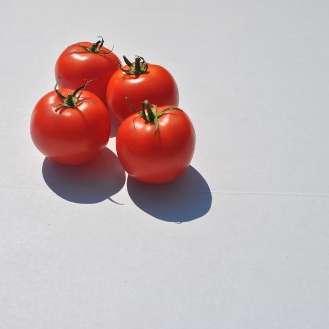 """red tomatoes"" stock image"