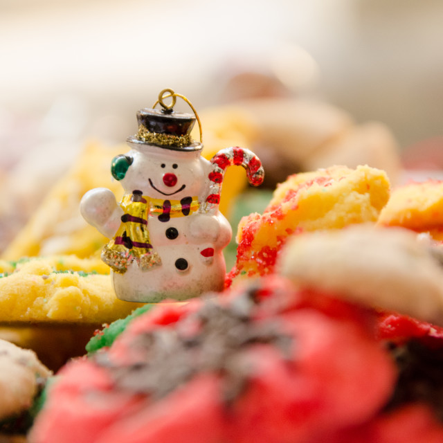 """Mr. Snowman in Cookie Field"" stock image"