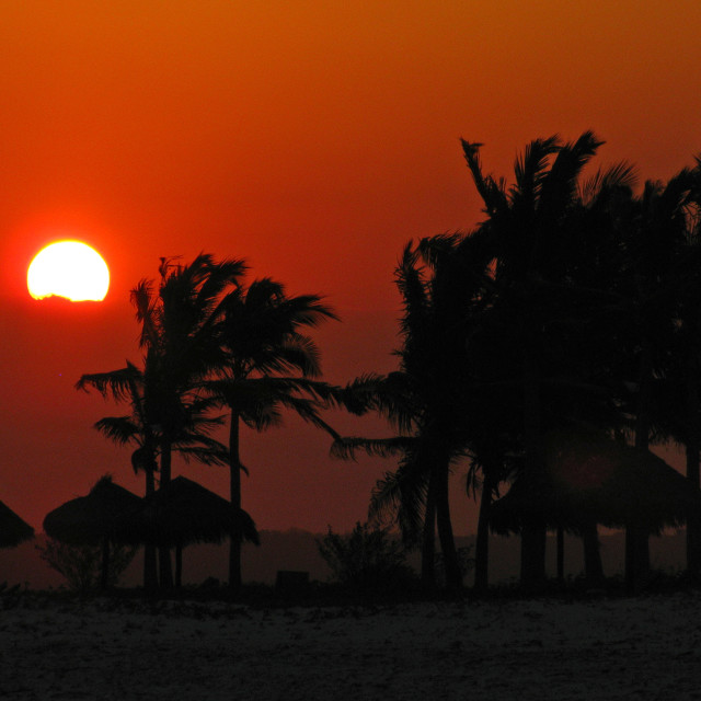 """Fiery sunset, Mozambique"" stock image"