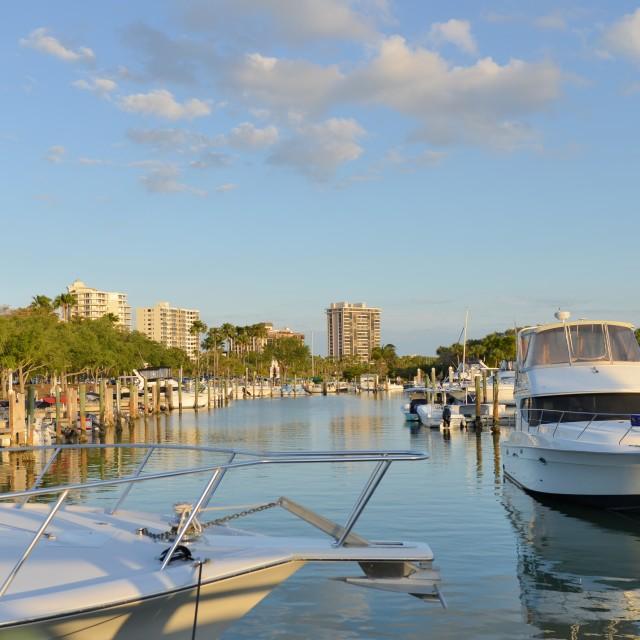 """""""Sarasota Florida Bayfront Park"""" stock image"""