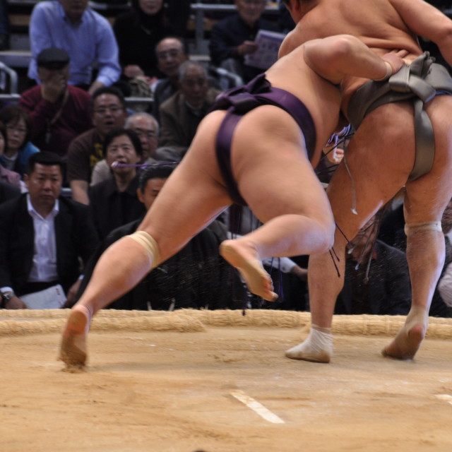 """Sumo mid-action"" stock image"