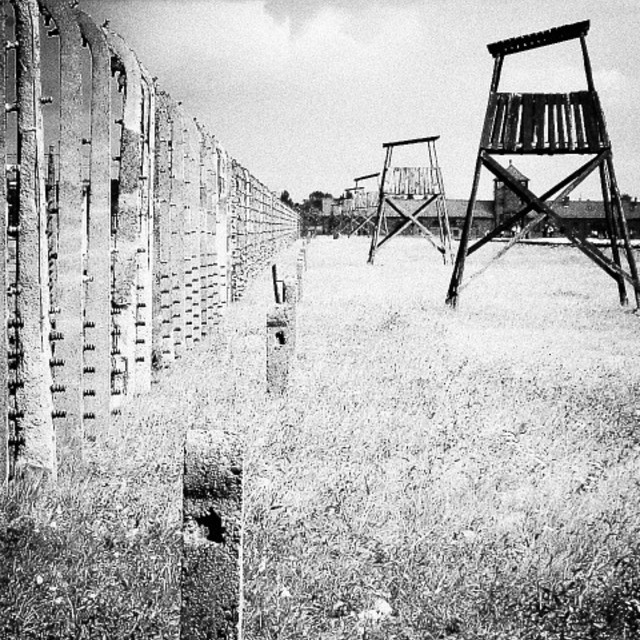 """Auschwitz guard towers"" stock image"