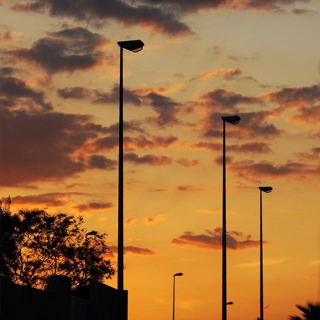 """Sentinals at Sunset"" stock image"
