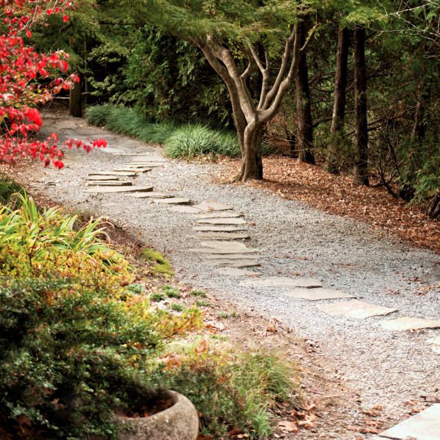 """Garden Path"" stock image"