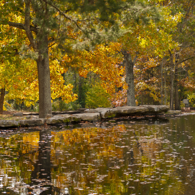 """Autumn Pond"" stock image"
