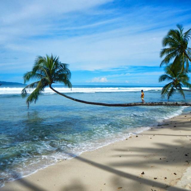 """""""balance in paradise"""" stock image"""