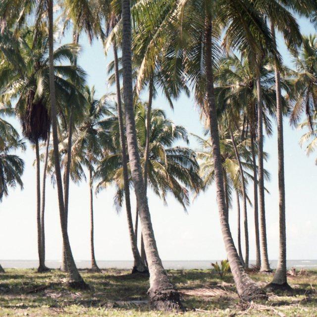 """beach"" stock image"