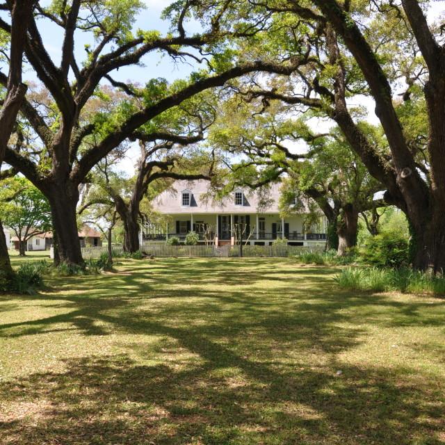 """Southern Plantation"" stock image"