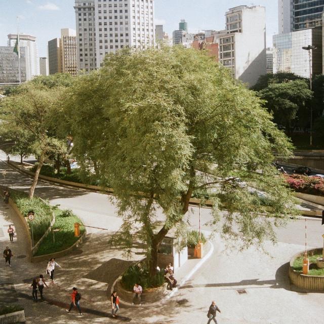 """""""São Paulo downtown"""" stock image"""